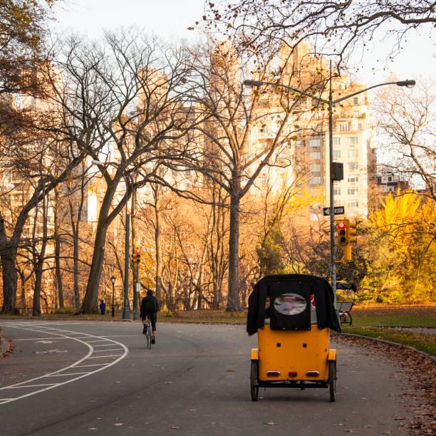Taxi-Bike im Central Park, Manhattan, New York City – Foto