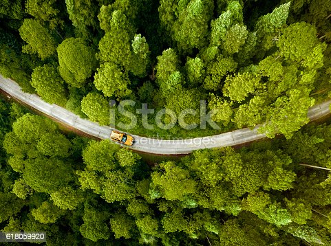 618059920istockphoto Taxi driving through Park 618059920