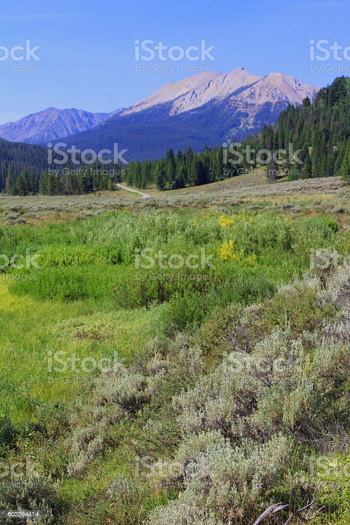 Taylor Creek and Peak stock photo