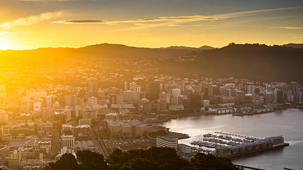 Te Aro and Wellington Harbor in Golden Sunlight View of Wellington, New Zealand from Mount Victoria, with the marina and Te Aro neighborhood in the center. Golden light bathes the city as the sun hits the horizon in the evening. Still taken from time lapse video #615130190. mt victoria canadian rockies stock pictures, royalty-free photos & images