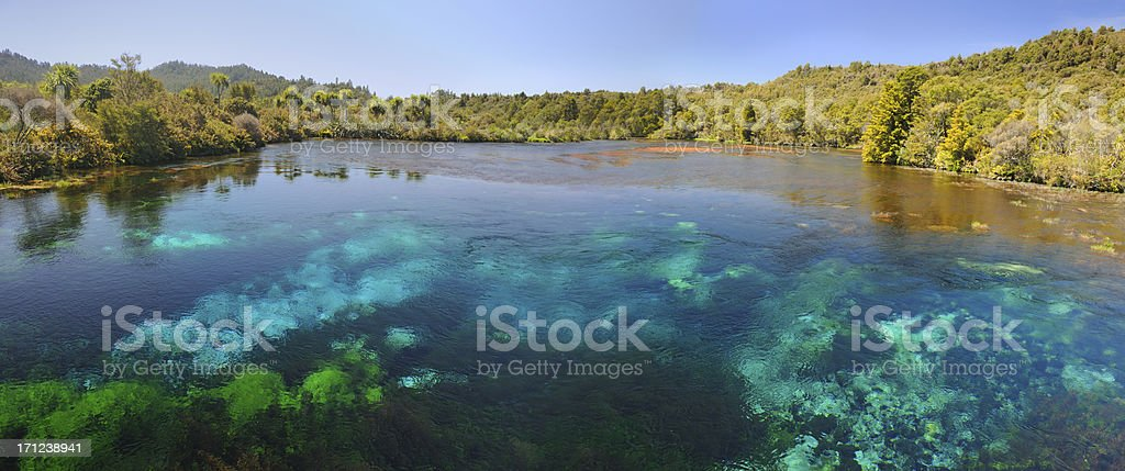 Te Waihou Clearest Water, New Zealand (XXXL) stock photo