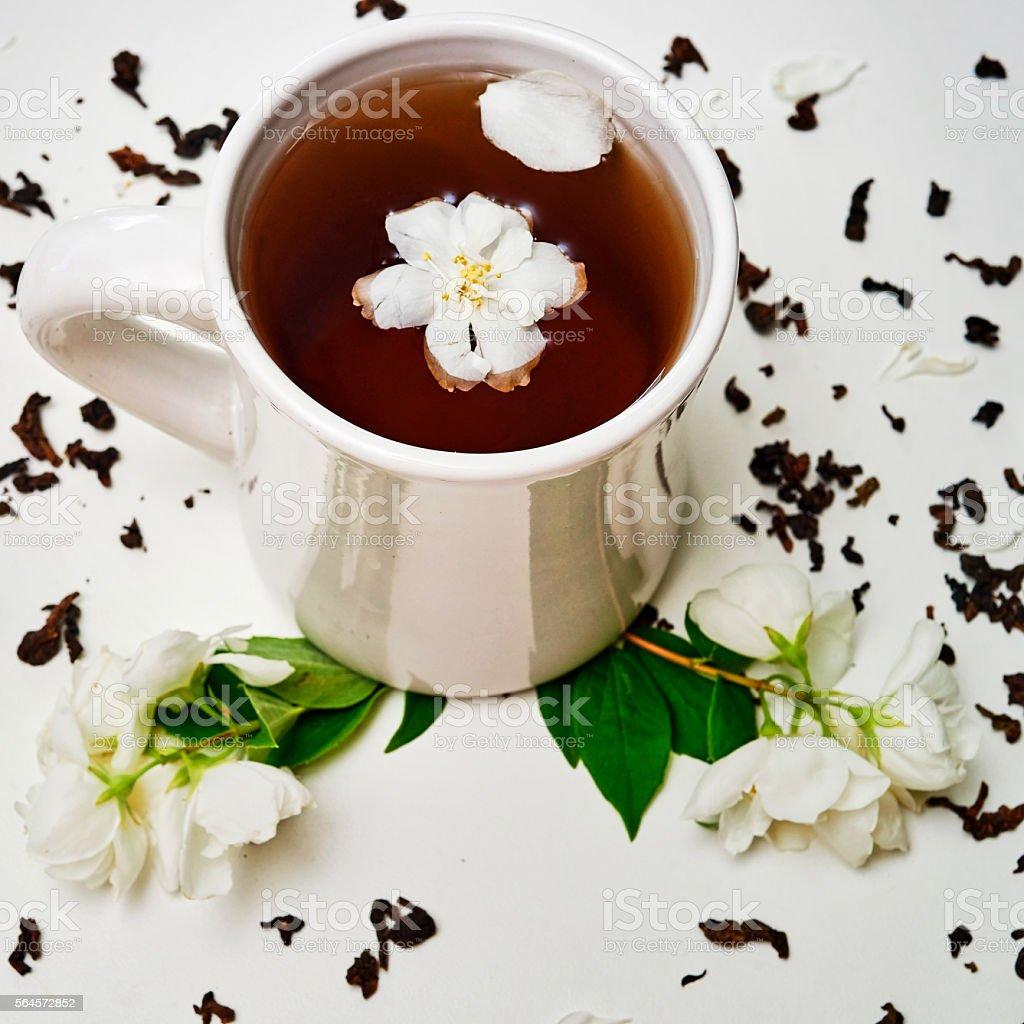 Tea Cup With Dried Jasmine And Fresh Fragrant Jasmine Flowers Stock