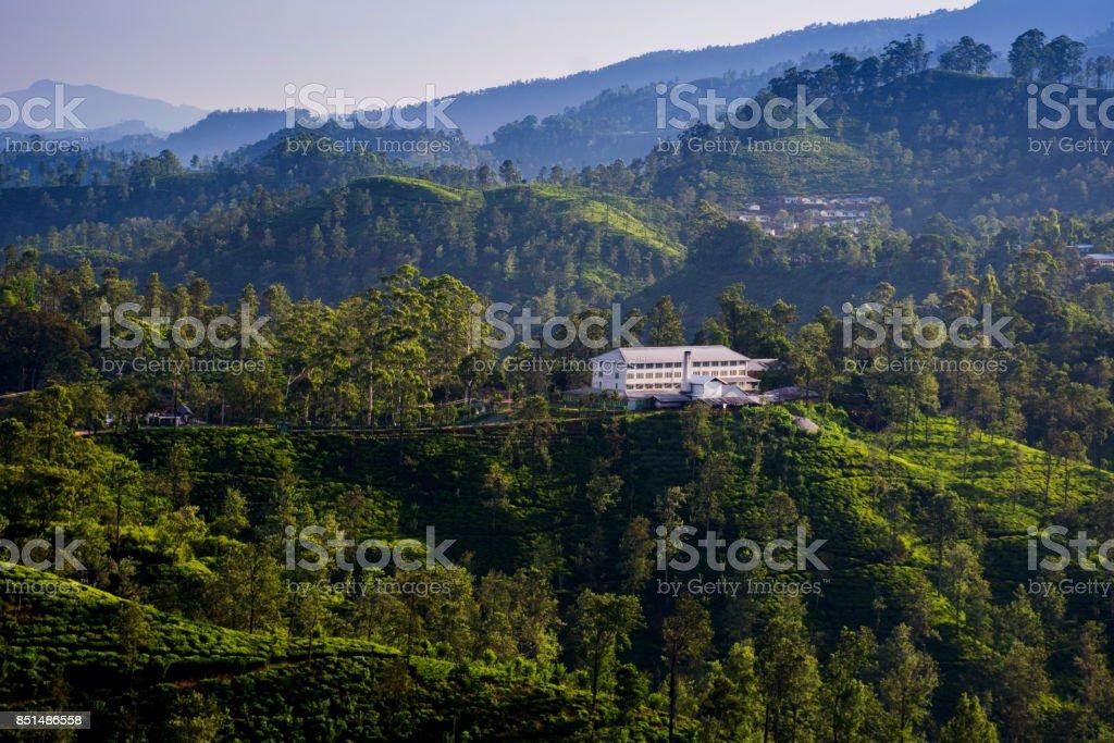 A tea factory surrounded by tea plantations in Ella, Sri Lanka stock photo