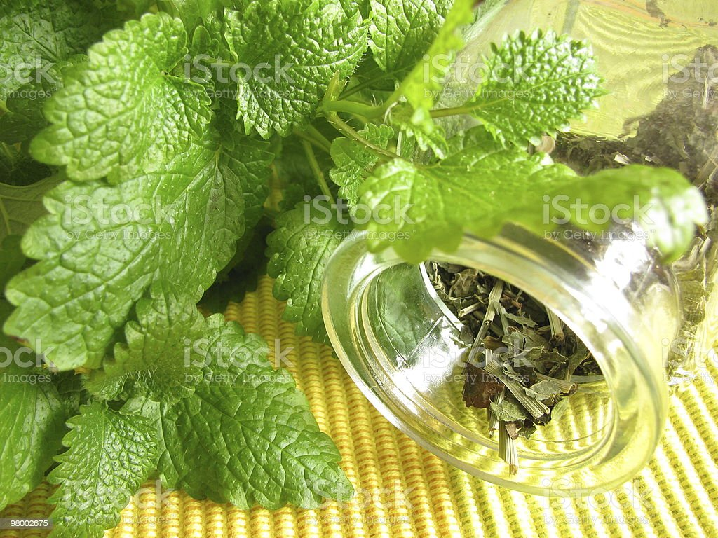 Tea herbs with balm royalty free stockfoto