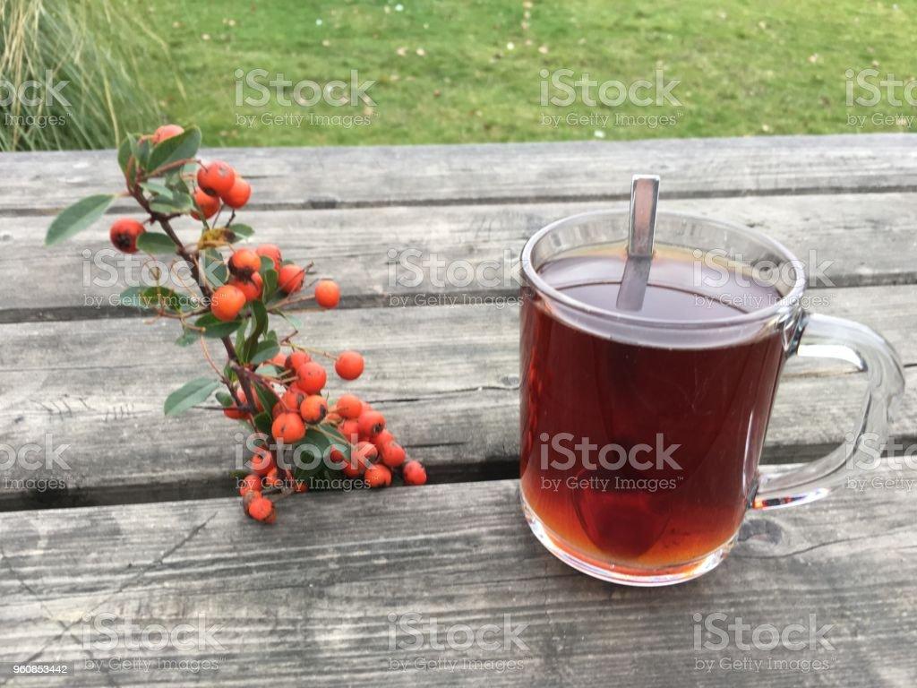 çay Bahçe arka plan biriminde izole stok fotoğrafı