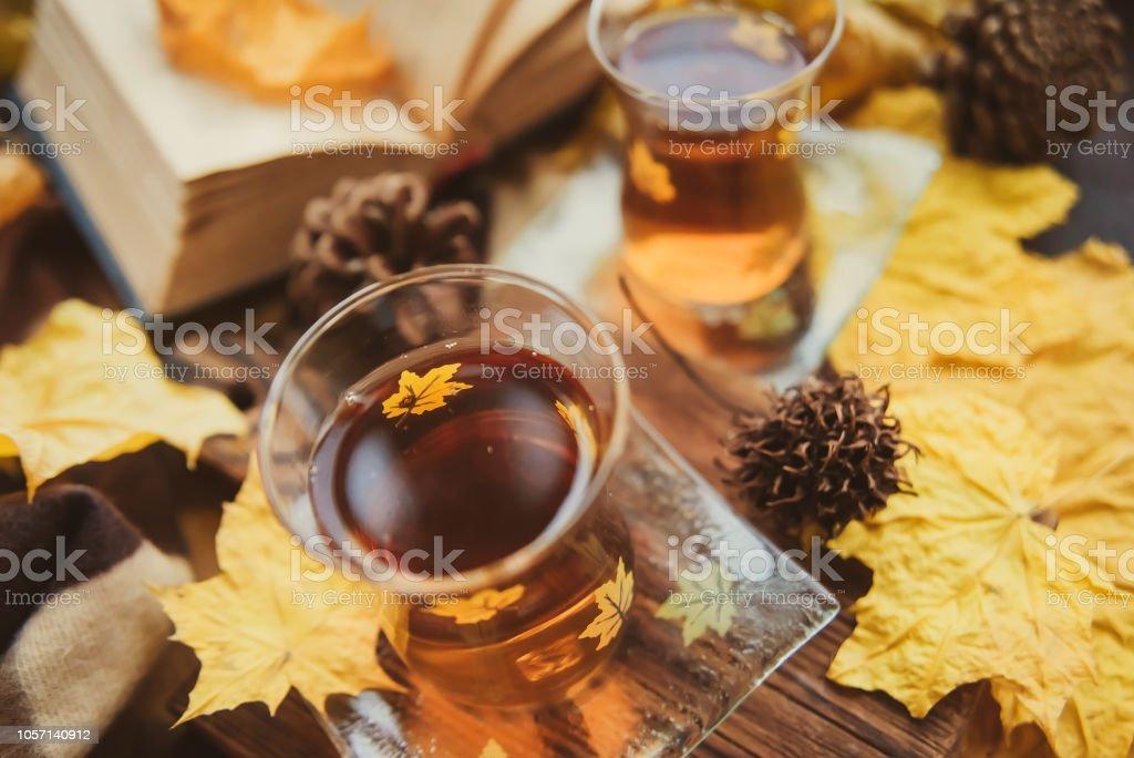 Çay Türk bardak, kitaplar, pencere ve sıcak bir battaniye - rahatlık ve sıcaklık sonbaharda kavramı sarı akçaağaç yaprakları. stok fotoğrafı