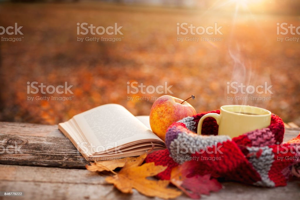 Tea mug with warm scarf open book and apple