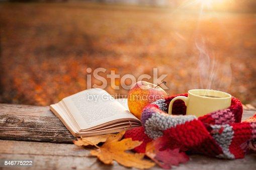 istock Tea mug with warm scarf open book and apple 846775222
