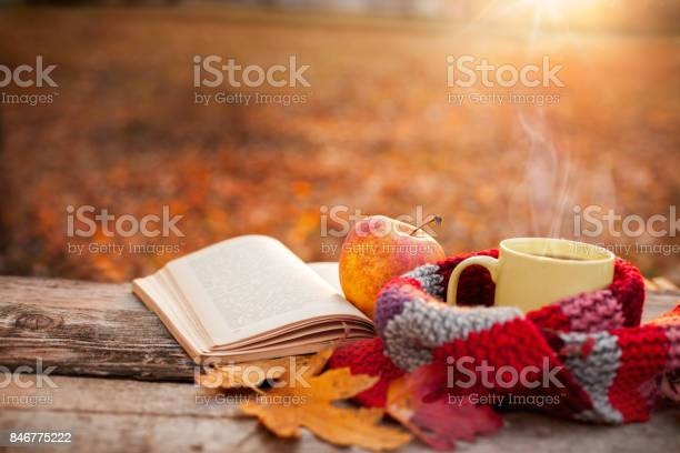 Tea mug with warm scarf open book and apple picture id846775222?b=1&k=6&m=846775222&s=612x612&h=f1uhw1 js3yqv67gvuv07zc7gs tgkvflwcf8zgk2e8=