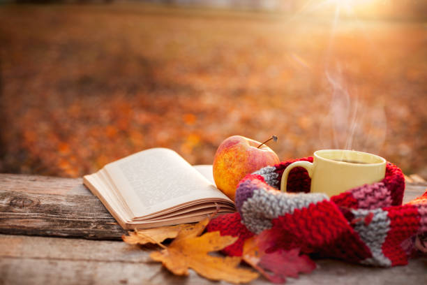 tea mug with warm scarf open book and apple - spadać zdjęcia i obrazy z banku zdjęć