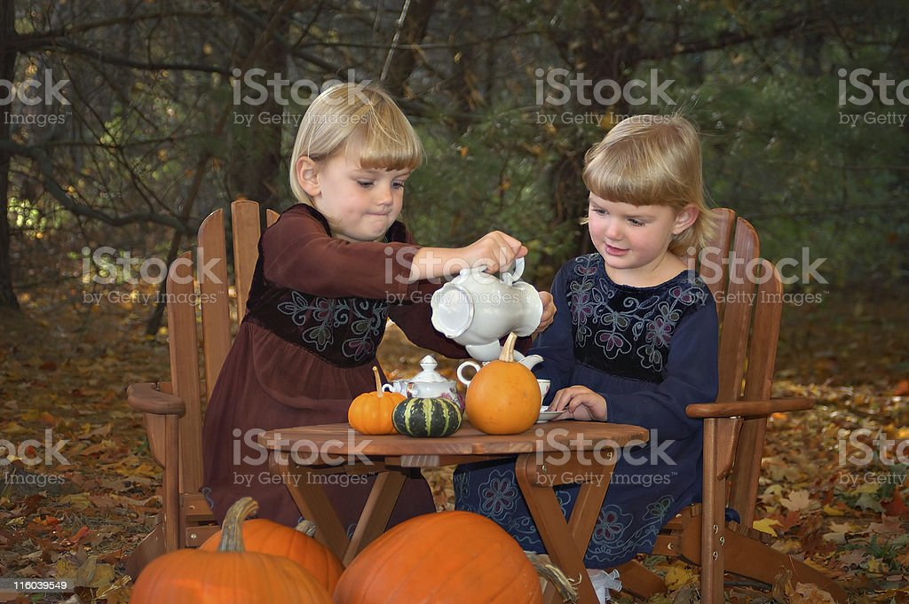 Tea Party in the Woods royalty-free stock photo