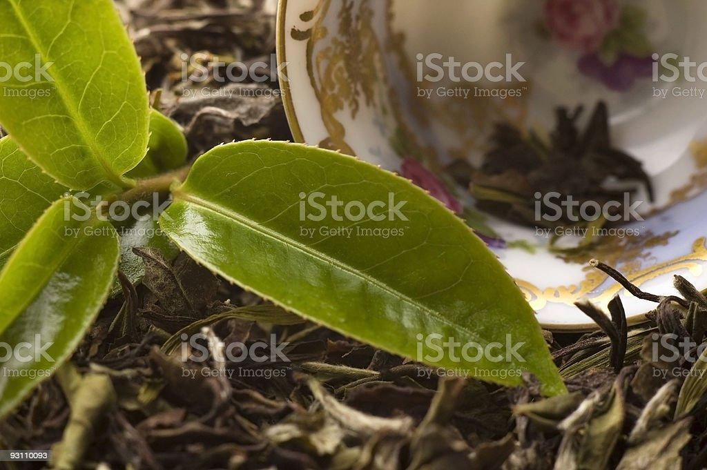 tea - Royalty-free Altın - Tanımlı renk Stok görsel