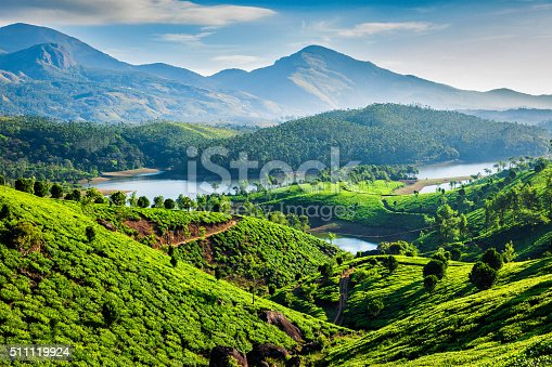 istock Tea plantations and river in hills. Kerala, India 511119924
