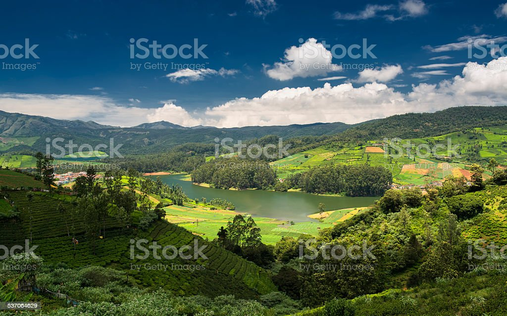 Tea plantations around the Emerald Lake in Ooty Tea plantations around the Emerald Lake in Ooty. Beautiful clouds formed over the Emerald Lake. Ooty or Ootacamund (Udamandalam) is a popular hill station in Tamil Nadu. 2015 Stock Photo