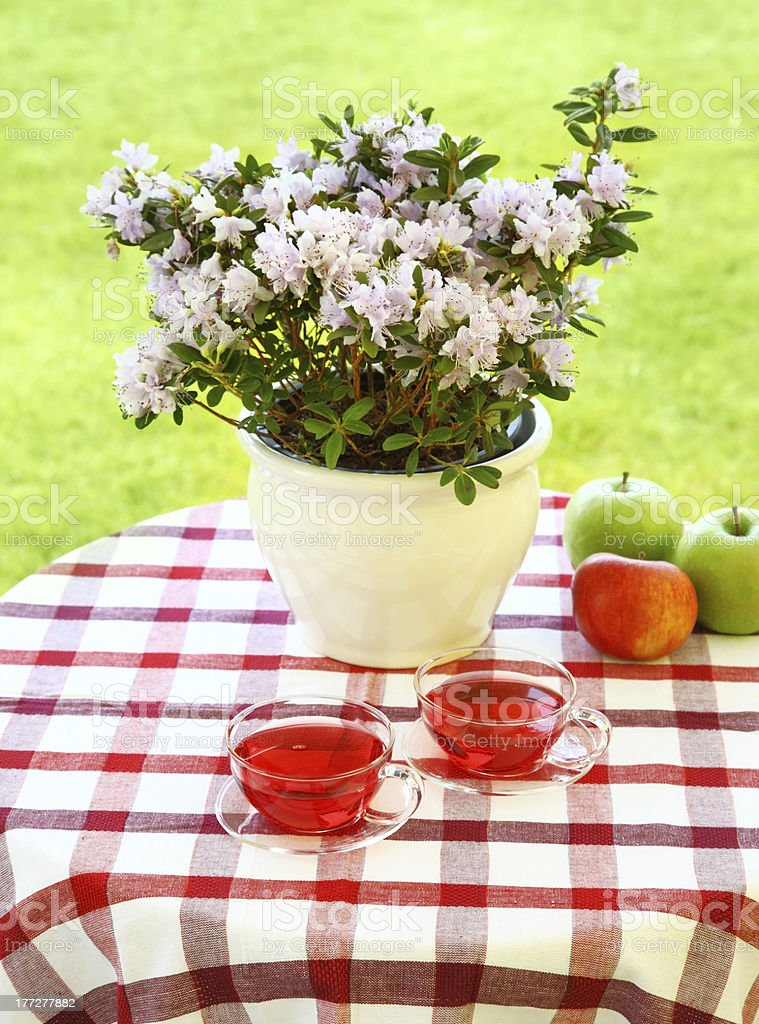 Tea served in the garden stock photo