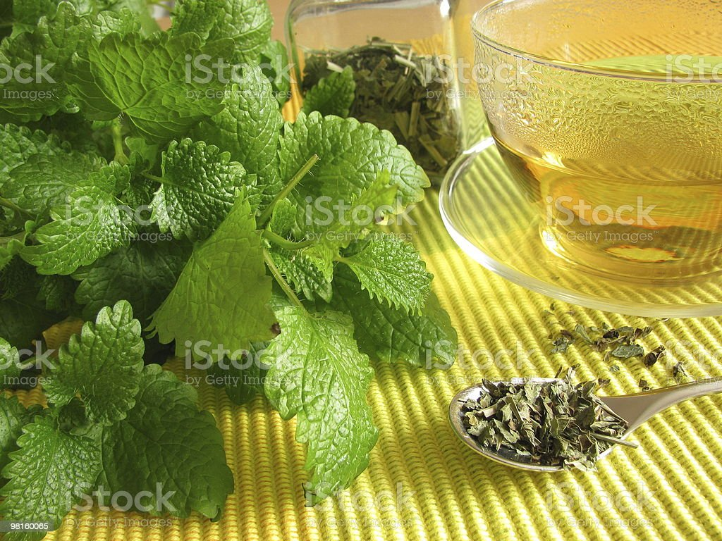Tea with balm royalty-free stock photo