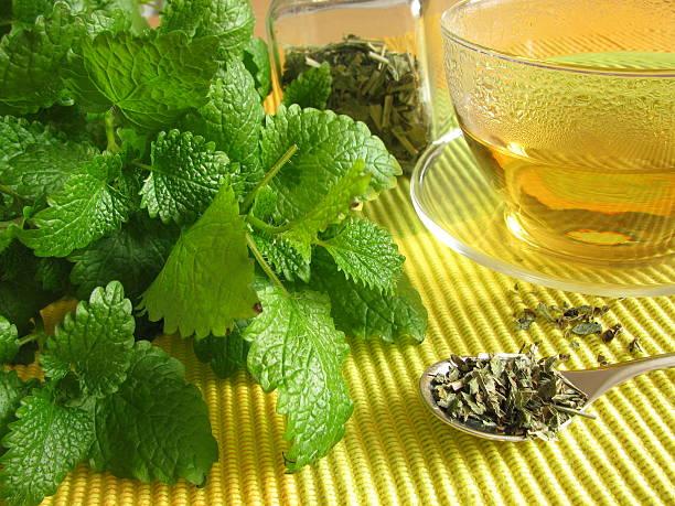 Tea with balm stock photo