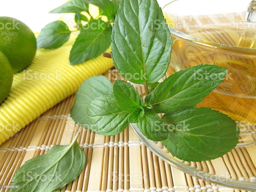 Tea with lemon mint royalty-free stock photo