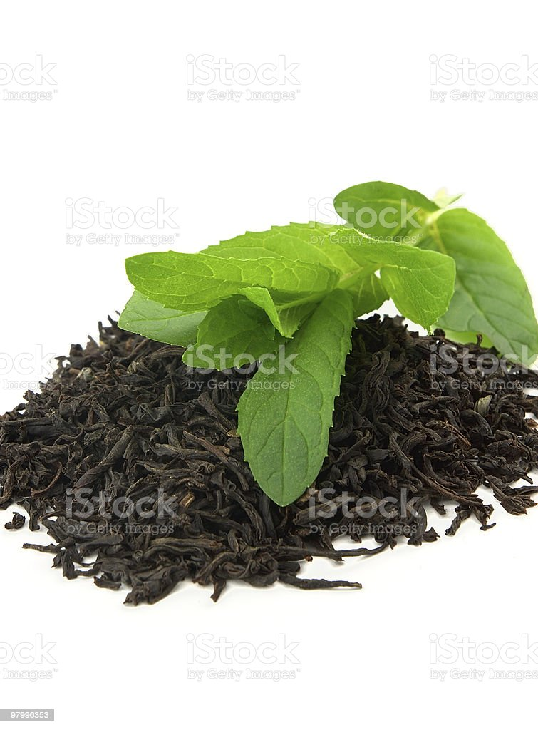 Tea with mint royalty free stockfoto