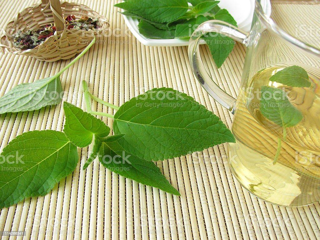 Tea with pineapple-scented sage royalty-free stock photo