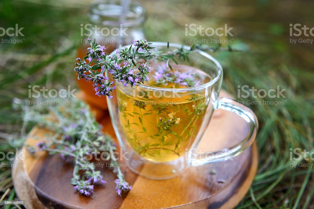 Tea with wild thyme. stock photo