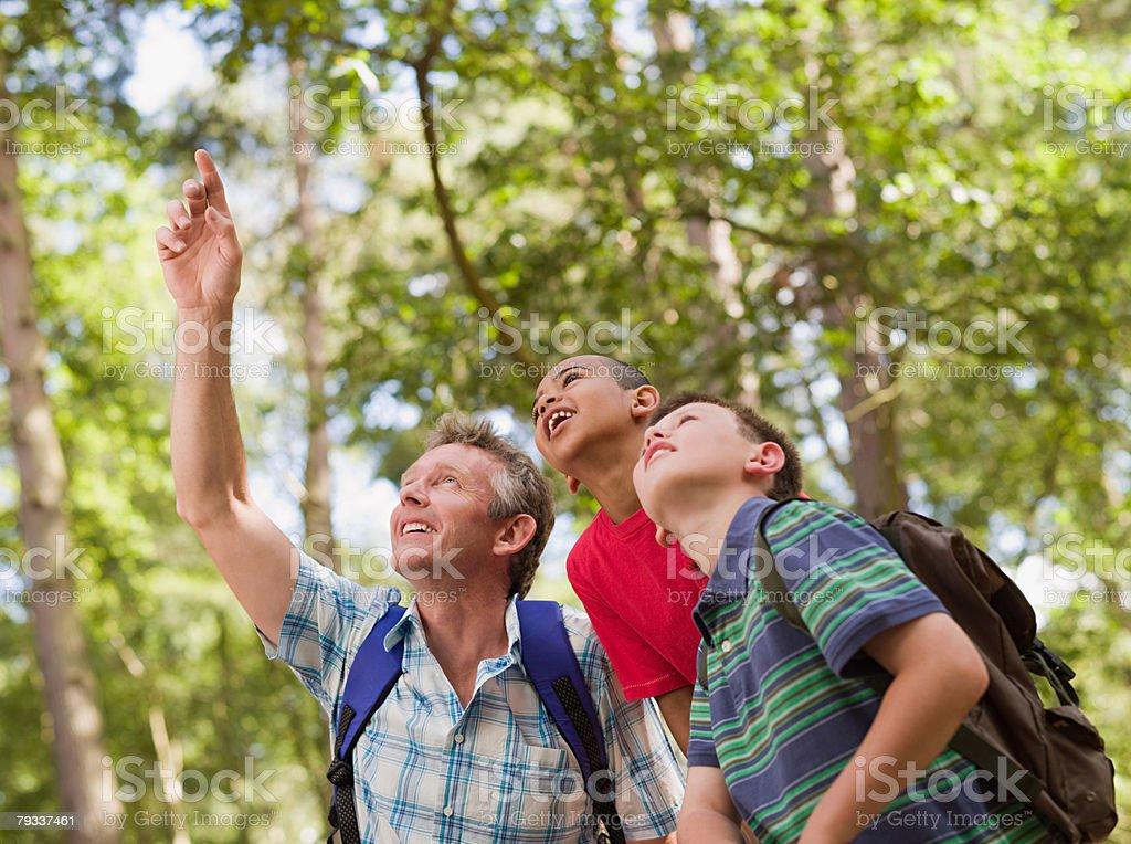 Lehrer und Kinder im Wald Lizenzfreies stock-foto