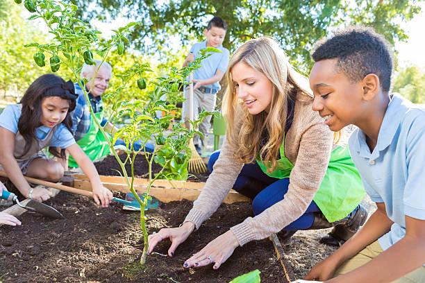 agricultor de ensino do professor e alunos elementares de jardinagem - teacher school solo imagens e fotografias de stock