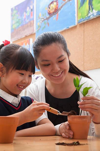 professor e aluna plantio plantas em flowerpots - vida de estudante - fotografias e filmes do acervo