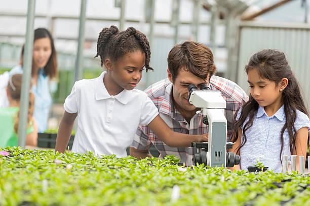 teacher and students look through microscope on field trip - teacher school solo imagens e fotografias de stock