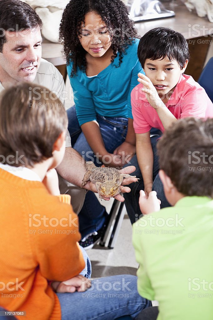 Teacher showing reptile to students royalty-free stock photo
