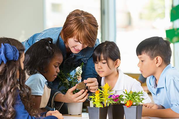 professor, utilizando instalações para ensinar ciência classe na escola privada - teacher school solo imagens e fotografias de stock