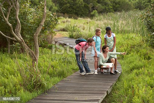 Teacher showing something to children during nature field trip