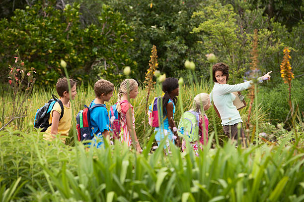 Teacher With Children On Field Trip Young teacher with children on nature field trip field trip stock pictures, royalty-free photos & images