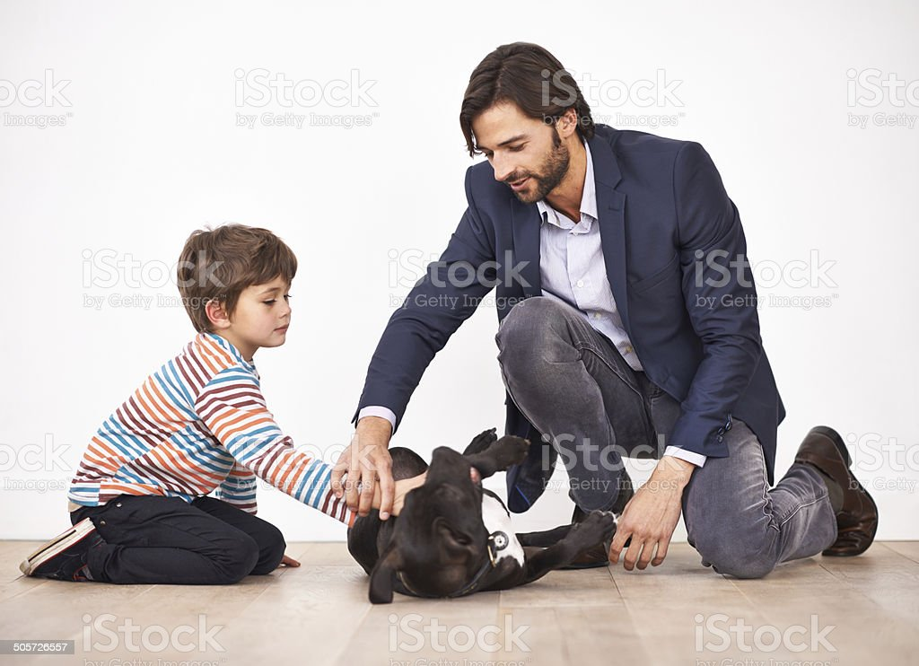 Teaching his son respect for animals stock photo