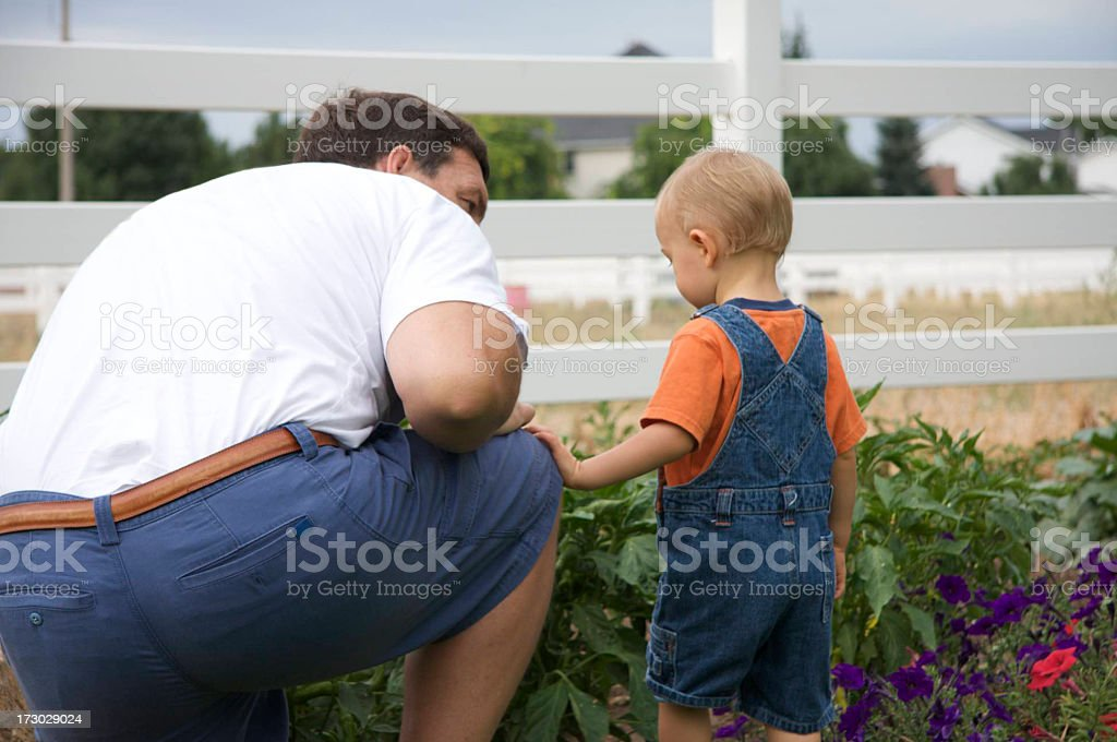 Teaching moment royalty-free stock photo
