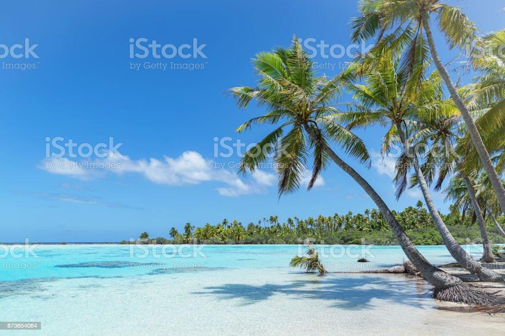 Teahatea Fakarava French Polynesia Atoll Beach - foto stock