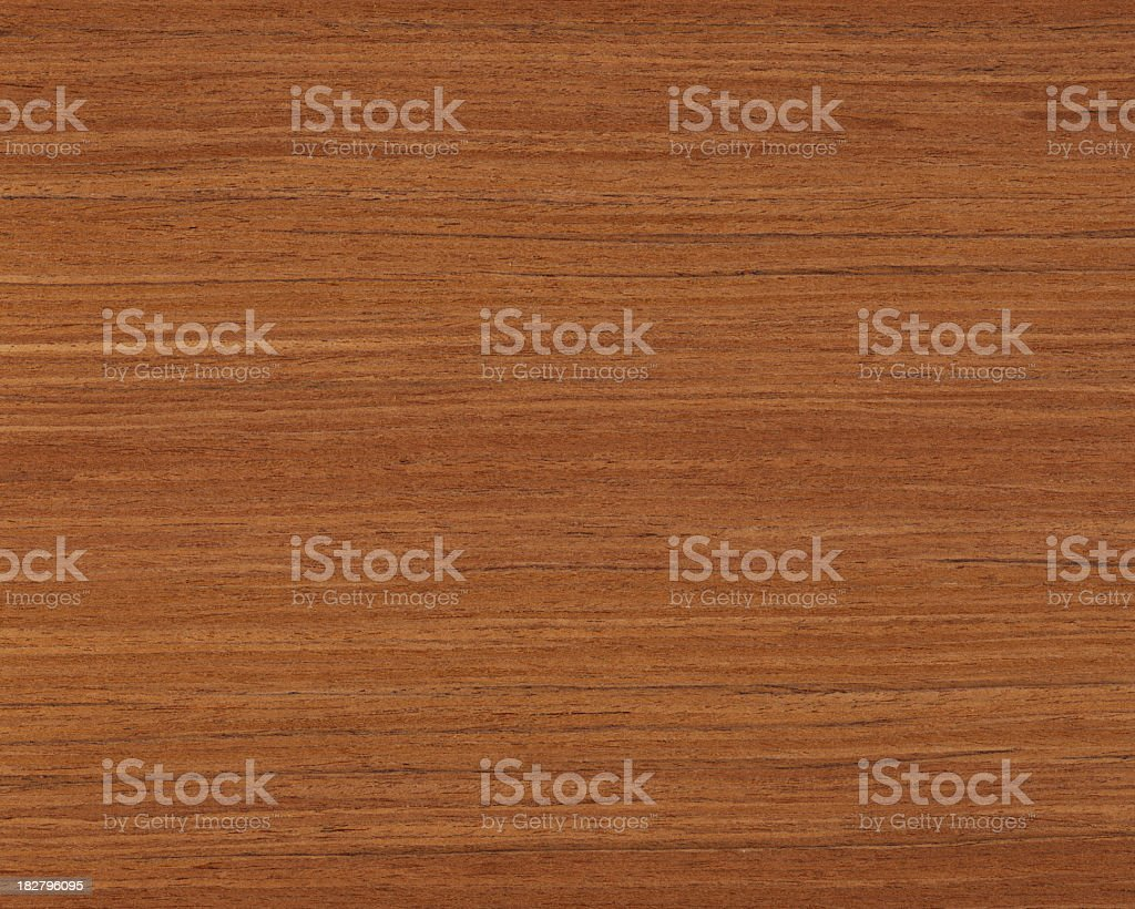 royalty free teak tree pictures  images and stock photos