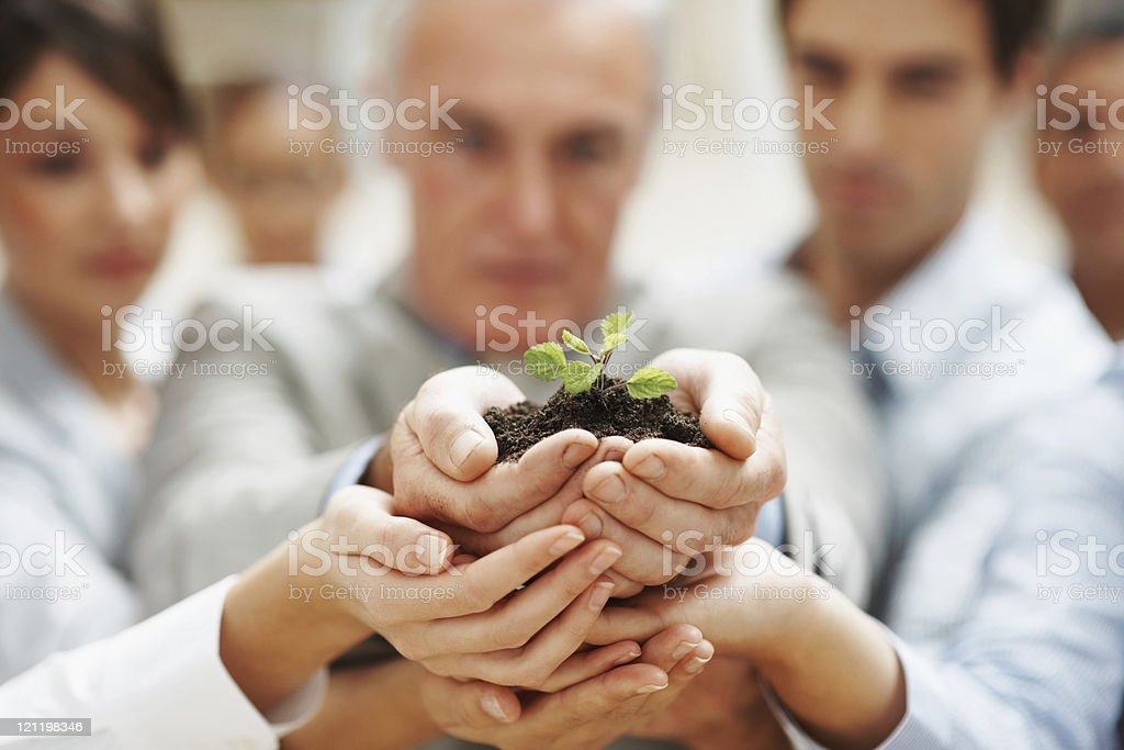 Team growth - Business people holding  a plant together stock photo