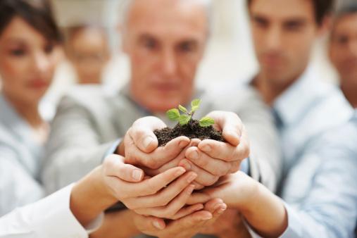 Team Wachstumbusiness Personen Halten Eine Pflanze Stockfoto und mehr Bilder von Aktiver Senior