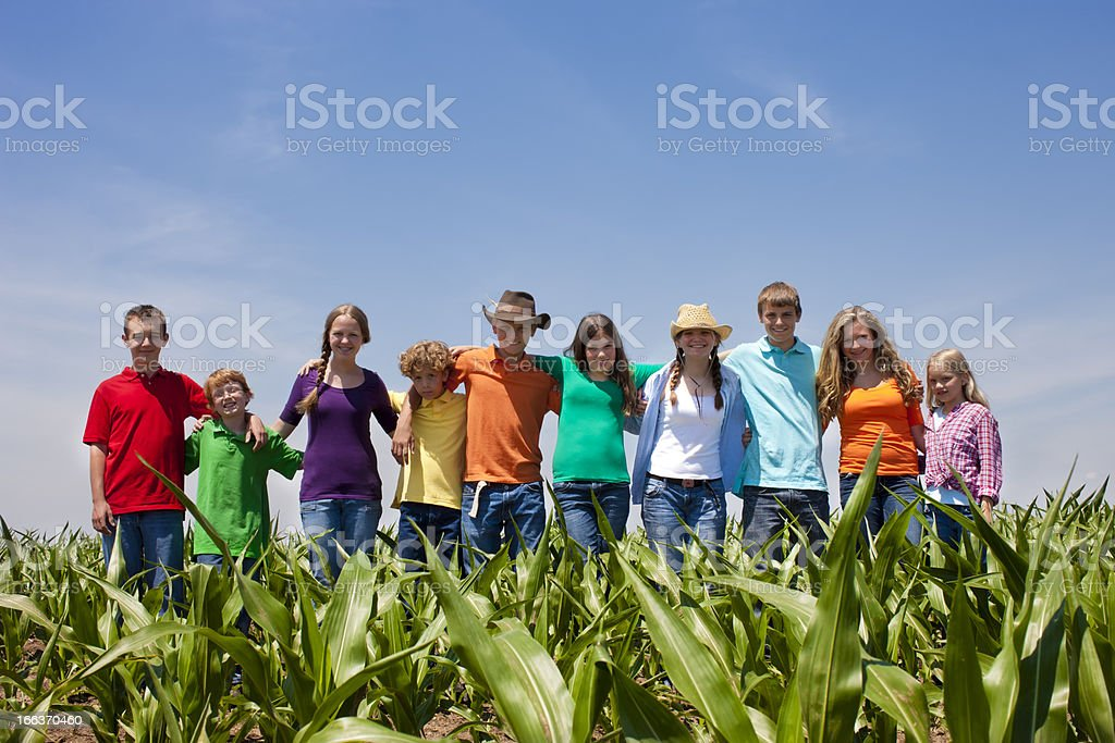 Team of Hardworking Teens and Children Corn Field American Farm stock photo