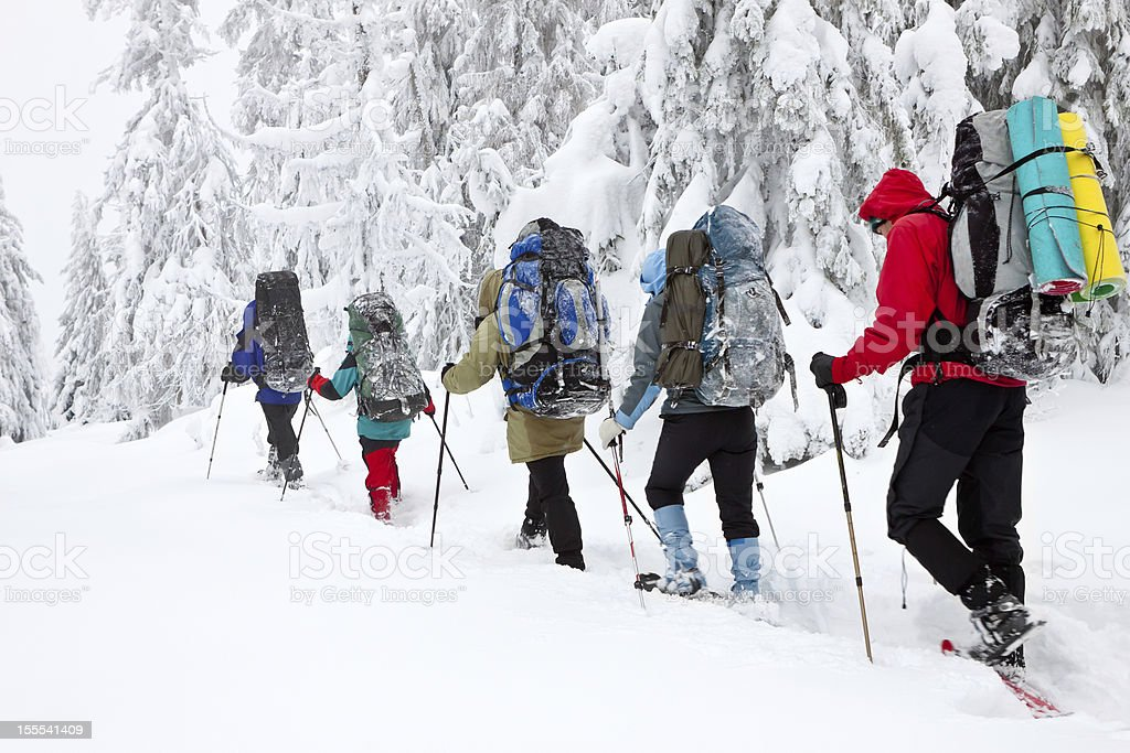 team of hikers in winter mountains stock photo