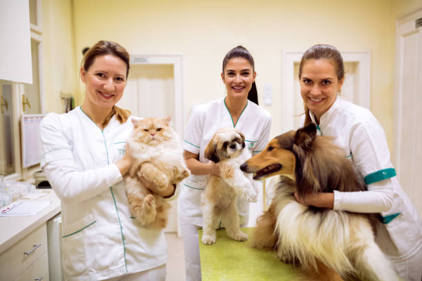 Team of smiling veterinarian with animals at pet ambulance picture id964301888?b=1&k=6&m=964301888&s=612x612&w=0&h=zq8e0mj 3f6ymfagkrr lbsyf4rpmjiu8m53gcxrubs=