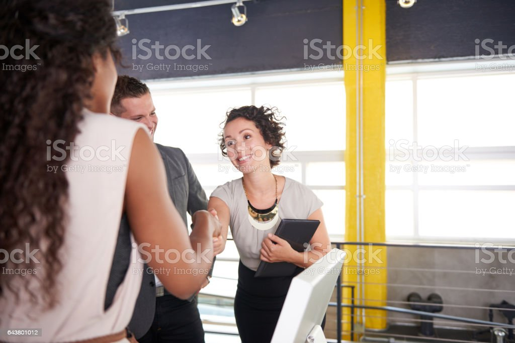 team of successful business people having a meeting in executive sunlit office stock photo