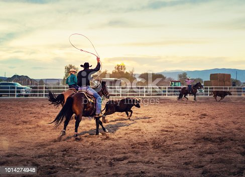 Team roping rodeo action