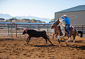Team roping rodeo action USA west