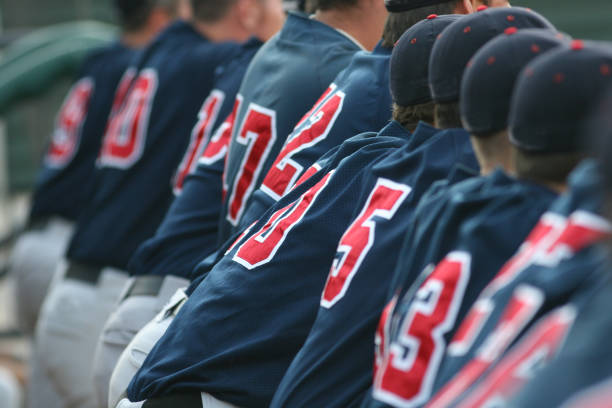 Teammates baseball teammates in the dugout baseball sport stock pictures, royalty-free photos & images