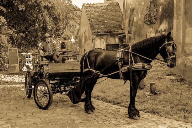 司機與他的馬車車 - 載客馬車 個照片及圖片檔
