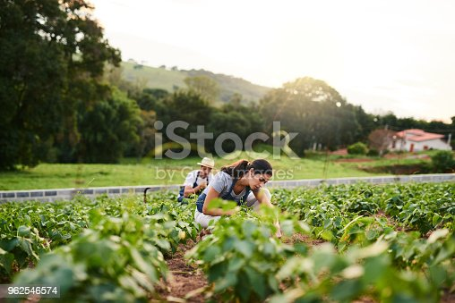 Shot of an attractive young woman working on the family farm with her husband in the background