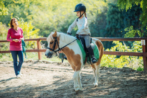 Teamwork with kids and horses in horseback riding school Kids with their pony horses on dressage. Kids with their personal trainer learn horseback riding. Great recreation for kids age 4 to 7, before they get on the big horses. pony stock pictures, royalty-free photos & images