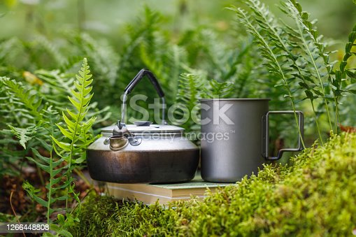 Teapot and mug on a book in the forest. Moss and fern. The background is blurred.